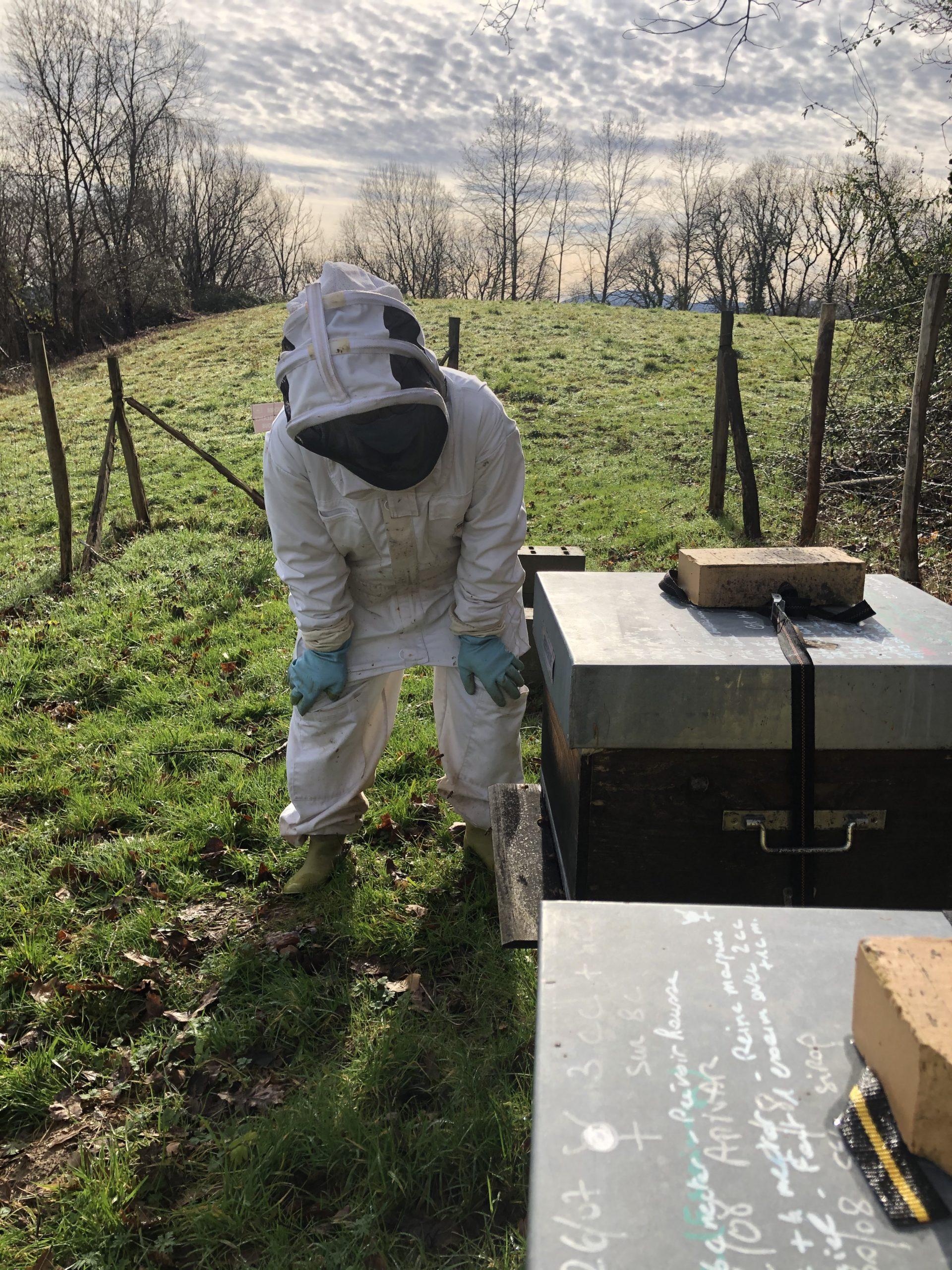 apiculteur sur les ruchers