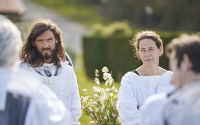 Le réveil des abeilles avec des chefs étoilés du Pays basque